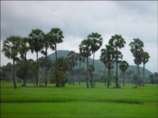 Phnom Roap Bat